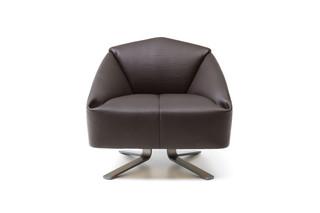 DS-373 Sessel  von  de Sede