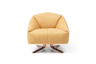 DS-373 Designer's Choice  by  de Sede
