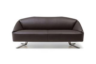DS-373 Sofa  von  de Sede