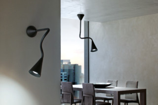 Snake wall- & ceiling-mounted light  by  Linea Light Group