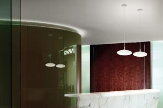 Squash suspension light  by  Linea Light Group