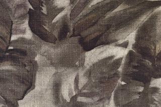 Materia Foliage grau  von  Molteni&C
