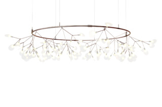 Heracleum Small Big O  von  Moooi