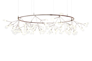 Heracleum Small Big O  by  Moooi