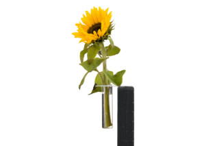 Team Tool flower vase  by  Nimbus Group