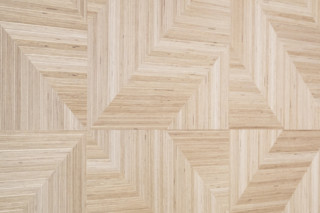 Geometric  by  Plexwood