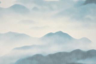 Fuji  von  SAHCO