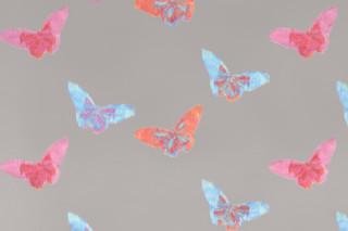 Papillon  von  SAHCO