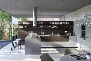 Forma Mentis with laquered door  by  Valcucine