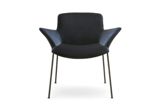 Burgaz Chair  by  Walter Knoll