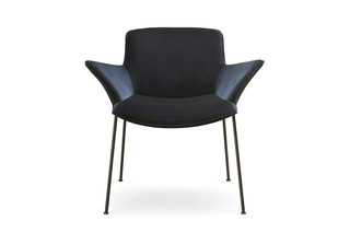 Burgaz Chair  by  Walter Knoll