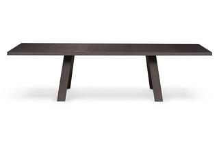 Tadeo Tisch  von  Walter Knoll