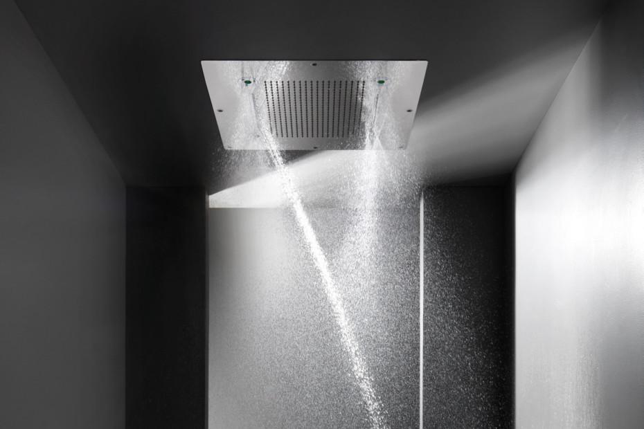 Shower Plus
