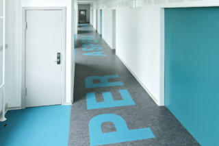 Linoleum inlays  by  DLW Flooring