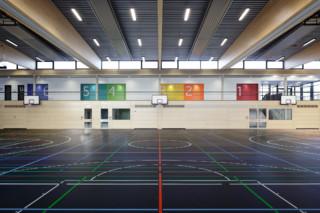Sport linoleum  by  DLW Flooring