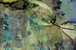 Affreschi Flower  von  Antonio Lupi