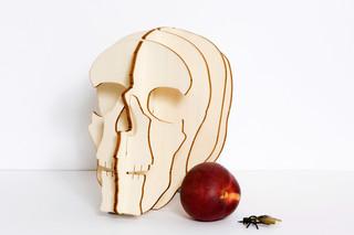 Crâne  by  Domestic