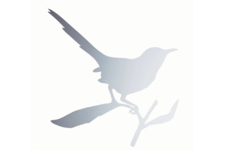 TAYLOR BIRD  by  Driade
