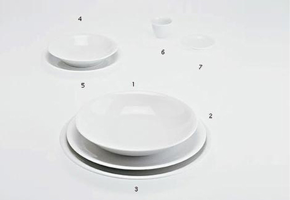 THE WHITE SNOW PLATES