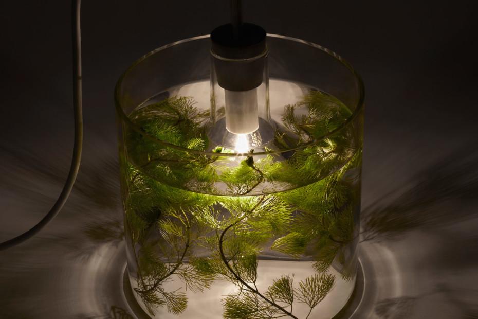 Vase & Leuchte