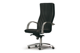Principal with armrests  by  Durlet