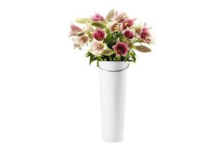 Eva Solo vase with handle  by  Eva Solo