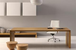 Multipliceo desk  by  Fantoni