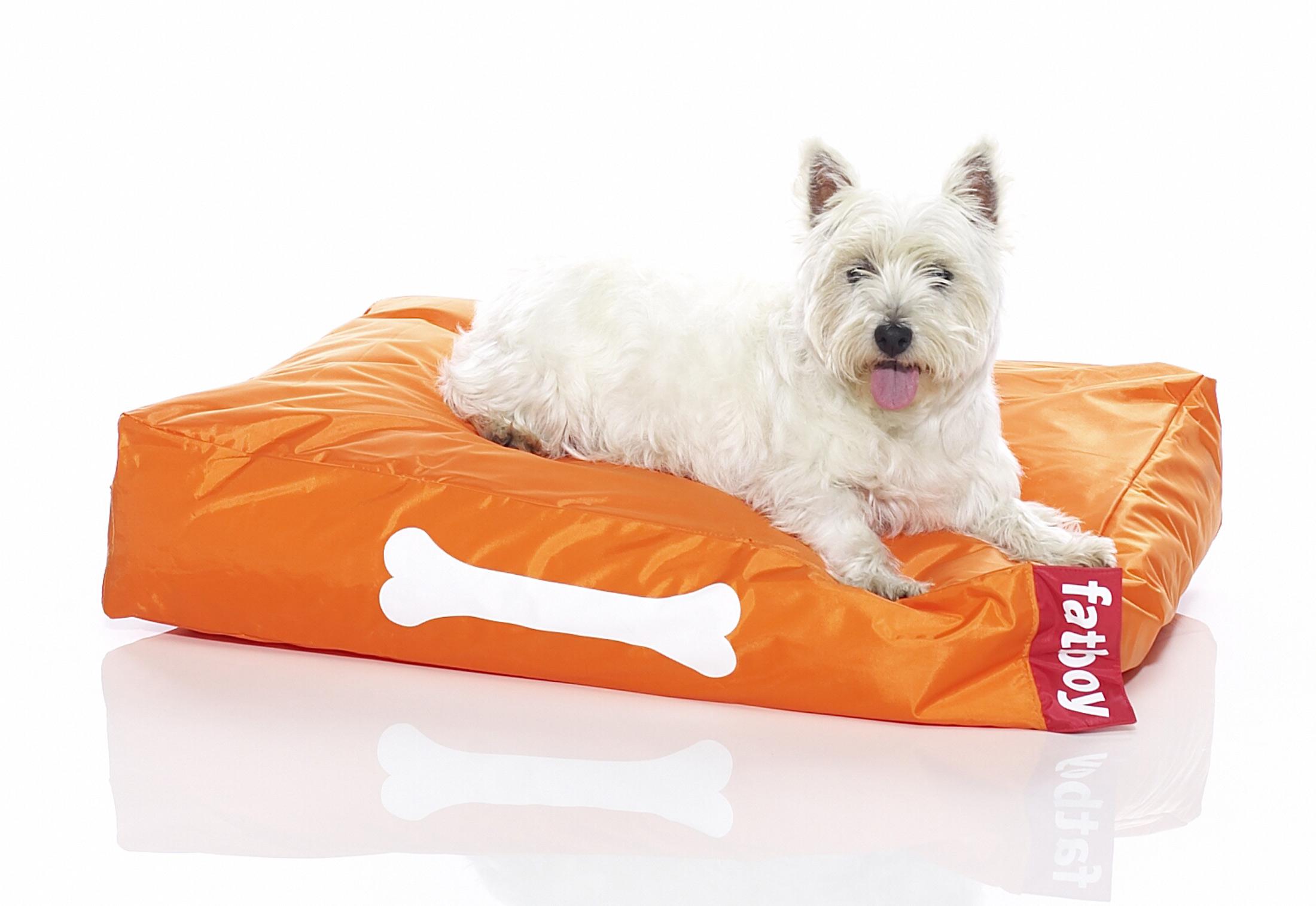 fatboy doggielounge von fatboy stylepark. Black Bedroom Furniture Sets. Home Design Ideas