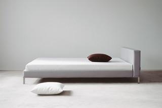 Lizard bed  by  fluidum
