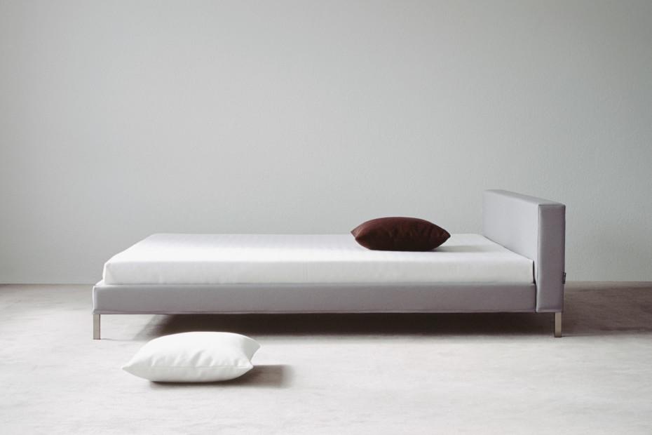 Lizard bed