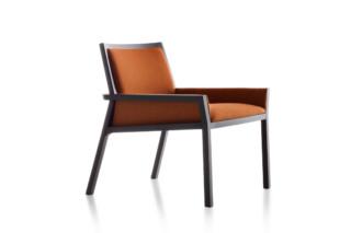Basicwood loungechair  by  Fornasarig