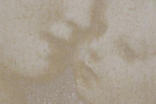 Fotobeton beige  von  Hering Bau