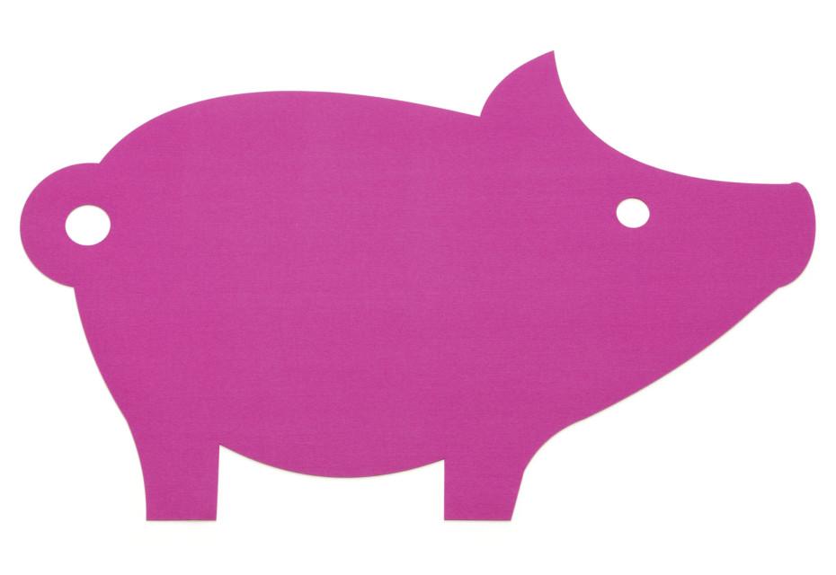 Rug Pig
