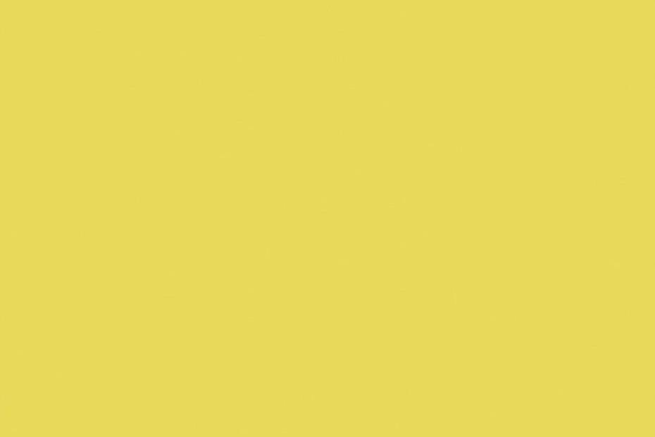 Solid Lemon Squash
