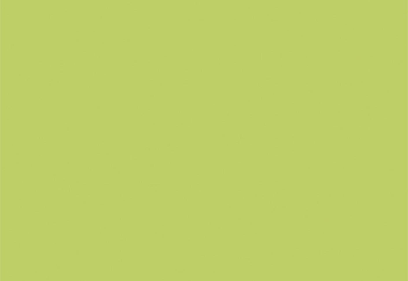 Light Green Walls Kitchen