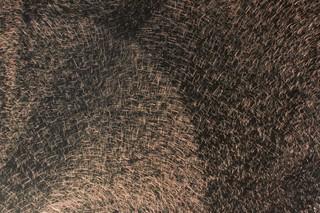 Copper Crush Stipple  by  HOMAPAL