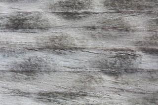 Larix Grey Matt Short-Carved  by  HOMAPAL