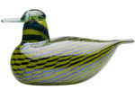 Common Teal female  by  Iittala