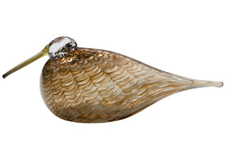 Eurasian Woodcock  by  Iittala