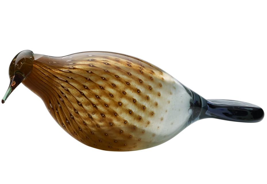 Eurasian Wryneck