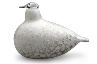 Willow Grouse  by  Iittala