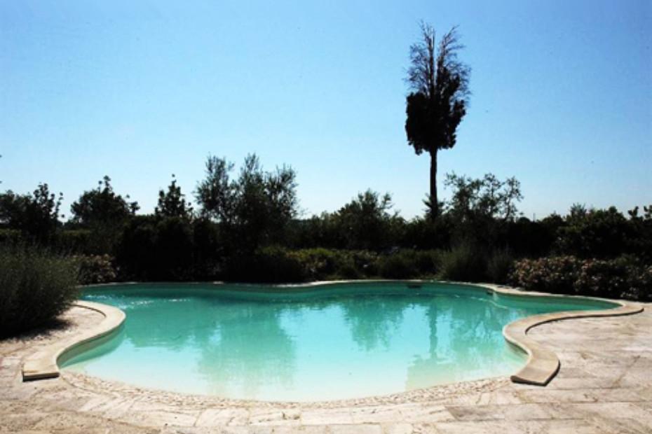 Schwimmbecken in freier Form mit Palladio Strand