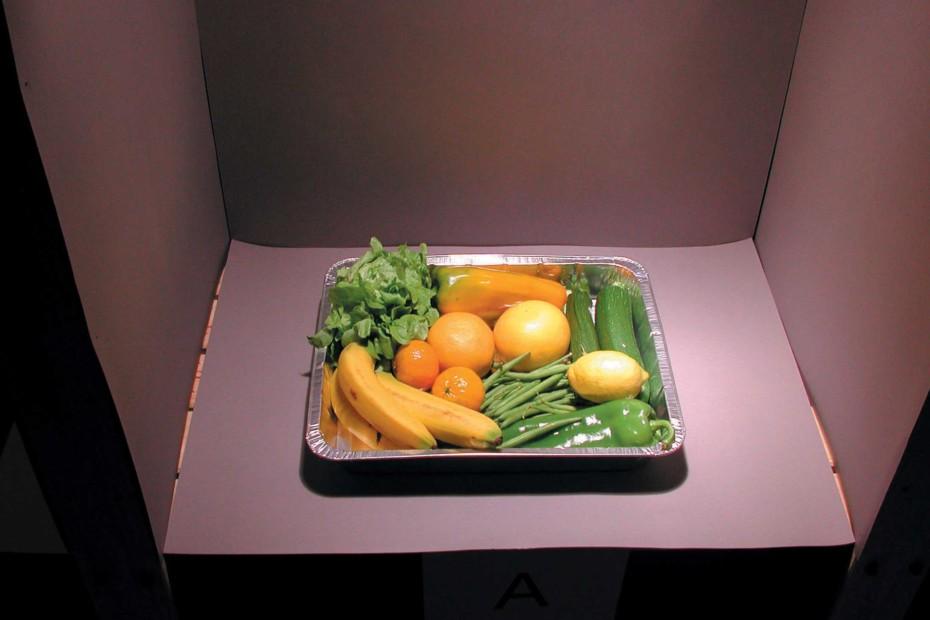 minisosia ''food light'' Pendant