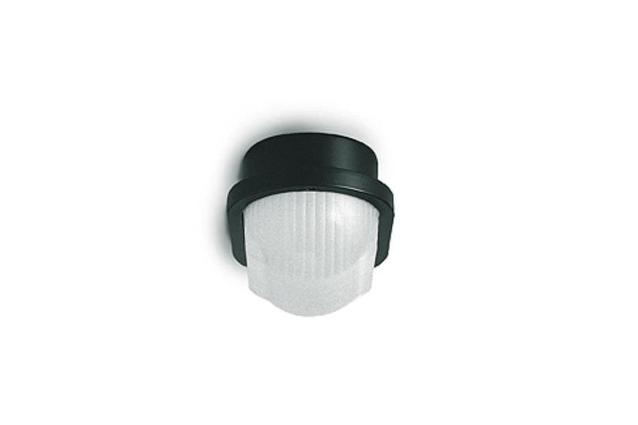 tortuga Wall/ ceiling light