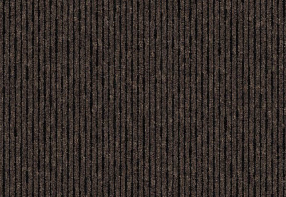Linear Tonal Beaver