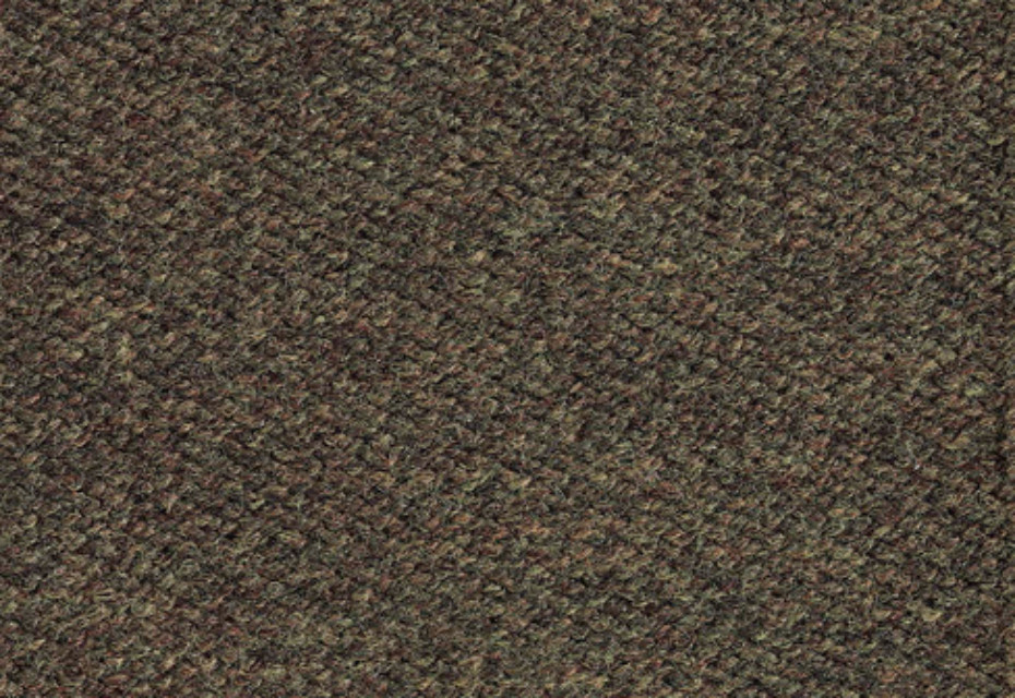 Andrew tweed