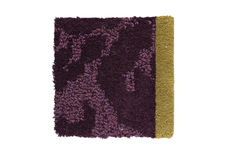 Juni purple viola