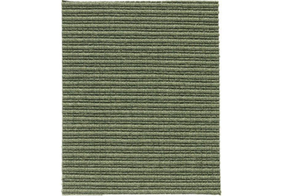 Macro salvia-green