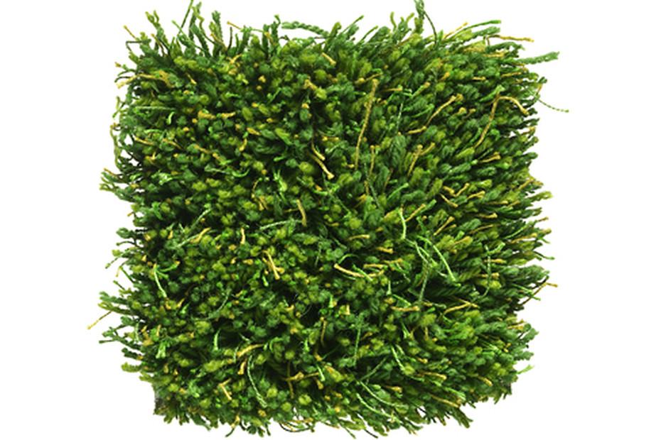 Moss grün