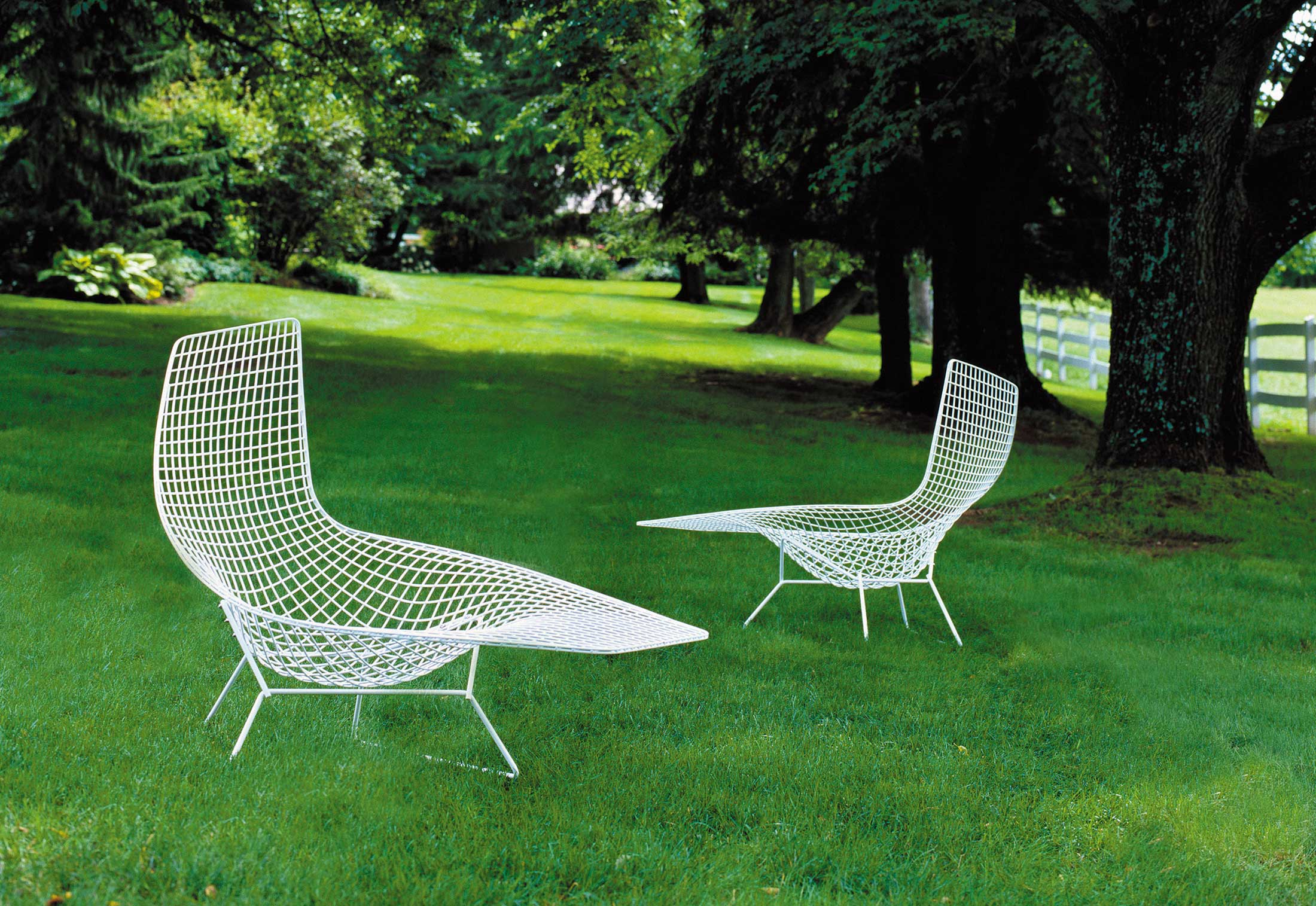 bertoia asymmetric chaise by knoll stylepark. Black Bedroom Furniture Sets. Home Design Ideas